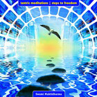 Tantric Meditations-Steps To Freedom