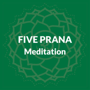 Five Prana Meditation