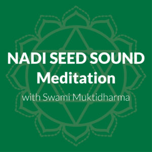 Meditation On The Nadi Seed Sounds