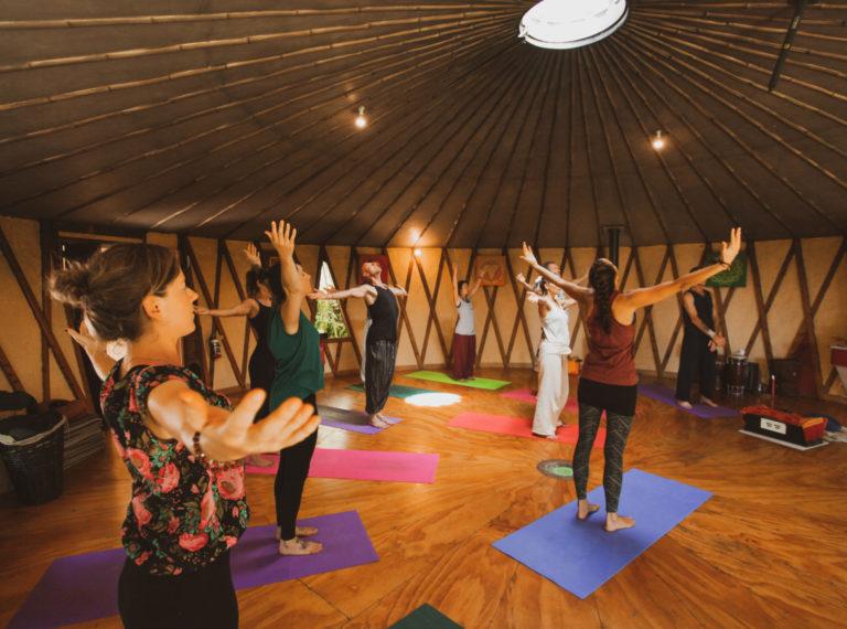 Koha Online Yoga Classes