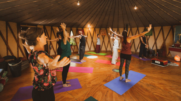 Experienced Satyananda Yoga Teachers Expertly Guide You Through Hatha Yoga, Morning Chanting, Yoga Nidra And Meditation. Classes Will Be Streamed Each Week.